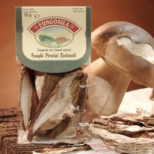 Funghi Porcini essiccati della Sila